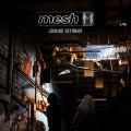2LPMesh / Looking Skyward / Vinyl / 2LP