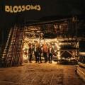 CDBlossoms / Blossoms / Digisleeve
