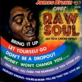 LPBrown James / Raw Soul / Vinyl