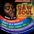 LPBrown James / Raw Soul / Vinyl