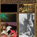 LPSonic Youth / Sister / Vinyl