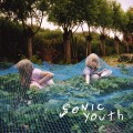 LPSonic Youth / Murray Street / Vinyl