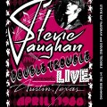 LPVaughan Stevie Ray / In The Beginning / Vinyl
