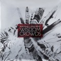 2LPSoord Bruce/Renkse Jonas / Wisdom Of Crowds / Vinyl / red / 2LP