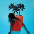 LPLocal Natives / Sunlith Youth / Vinyl