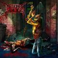 LPNational Suicide / Anothround / Vinyl