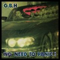 LPGBH / No Need To Panic / Vinyl