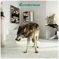 LP/CDGrinderman / Grinderman 2 / Vinyl+CD