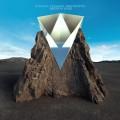 LPGiraffe Tongue Orchestra / Broken Lines / Vinyl