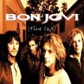 2LPBon Jovi / These Days / Vinyl / 2LP