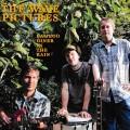 LPWave Pictures / Bamboo Diner In The Rain / Vinyl