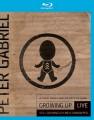 Blu-RayGabriel Peter / Growing Up / Still Growing Up-Live... / BRD+DV