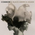 CDCommon / Black America Again