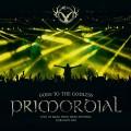 2LPPrimordial / Gods Of The Godless / Vinyl / 2LP