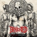 CDBenighted / Necrobreed / Limited / Box