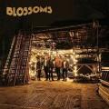2LPBlossoms / Blossoms / Vinyl / 2LP