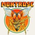 CDMontrose / Very Best Of