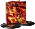 2LPMcCartney Paul / Flowers In The Dirt / Vinyl / 2LP