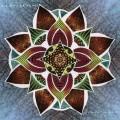 LPArbouretum / Song Of The Rose / Vinyl