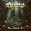CDCut Up / Wherever They May Rot / Digipack