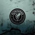 LPAlfahanne / Det Nya Svarta / Vinyl