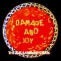 CDJesus & Mary Chain / Damage and Joy