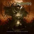 LPInsanity / Visions Of Apocalypse / Vinyl