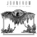 LPFrum John / Stirring Of The Noos / Vinyl