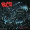 LPRude / Remnants / Vinyl