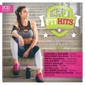 2CDVarious / Fit Hits 2017 / 2CD