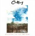 CDCeolbeg / Seeds To The Wind