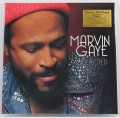 2LPGaye Marvin / Collected / Vinyl / 2LP