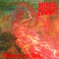 LPMorbid Angel / Blessed Are The Sick / Vinyl / Reedice