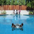 LPSparks / Hippopotamus / Vinyl / 2LP