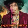 2LPHendrix Jimi / Experience Hendrix / Best Of / Vinyl / 2LP