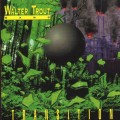 CDTrout Walter / Transition