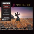 LPPink Floyd / A Collection Of Great Dance Songs / Vinyl