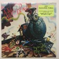 LP4 Non Blondes / Bigger,Better,Faster,More! / Vinyl