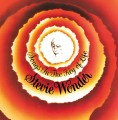 LPWonder Stevie / Songs In The Key Of Life / Vinyl