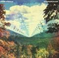 2LPTame Impala / Innerspeaker / Vinyl / 2LP
