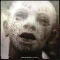 2LP/CDPain Of Salvation / Scarsick / Vinyl / 2LP+CD