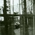 CDMcCartney Paul / Chaos And Creation In The Backyard / Digisleeve