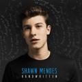 CDMendes Shawn / Handwritten / Vinyl