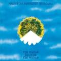 LPPremiata Forneria Marconi / World Became The World / Vinyl