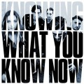 LPMarmozets / Knowing What You Know Now / Vinyl