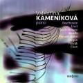 2CDKameníková Valentina / Piano / 2CD