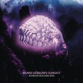 5CDGungfly / Rumbling Box'06-16 / Limited / 5CD