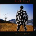 2CDPink Floyd / Delicate Sound of Thunder / 2CD