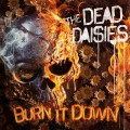 LP/CDDead Daisies / Burn It Down / Vinyl / Red / LP+CD