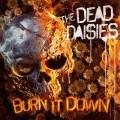 LPDead Daisies / Burn It Down / Vinyl / Picture